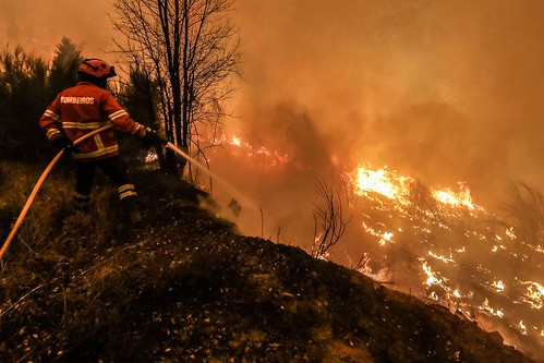 Ascienden a 64 los muertos por el incendio forestal en Portugal