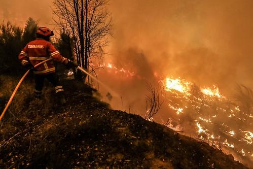 Casi 2.000 bomberos combaten incendio en Portugal