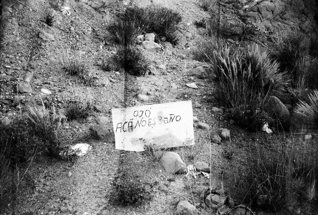 Mendoza.Wizen