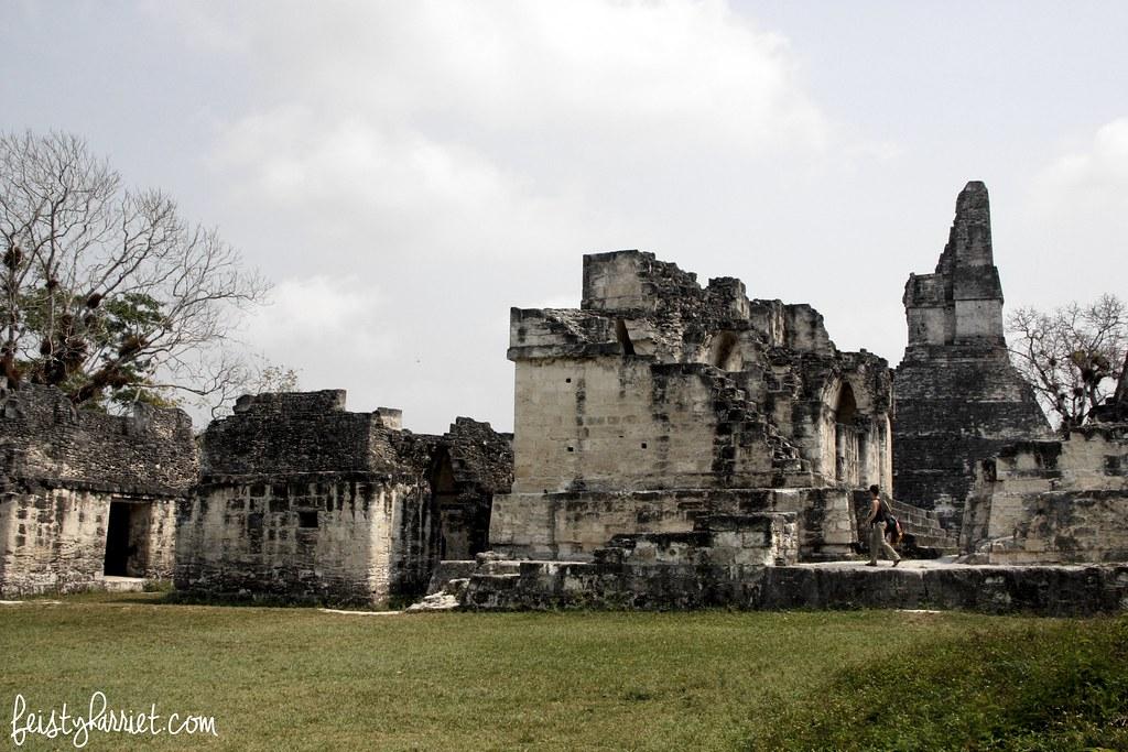 Tikal Guatemala_feistyharriet_April 2017 (7)