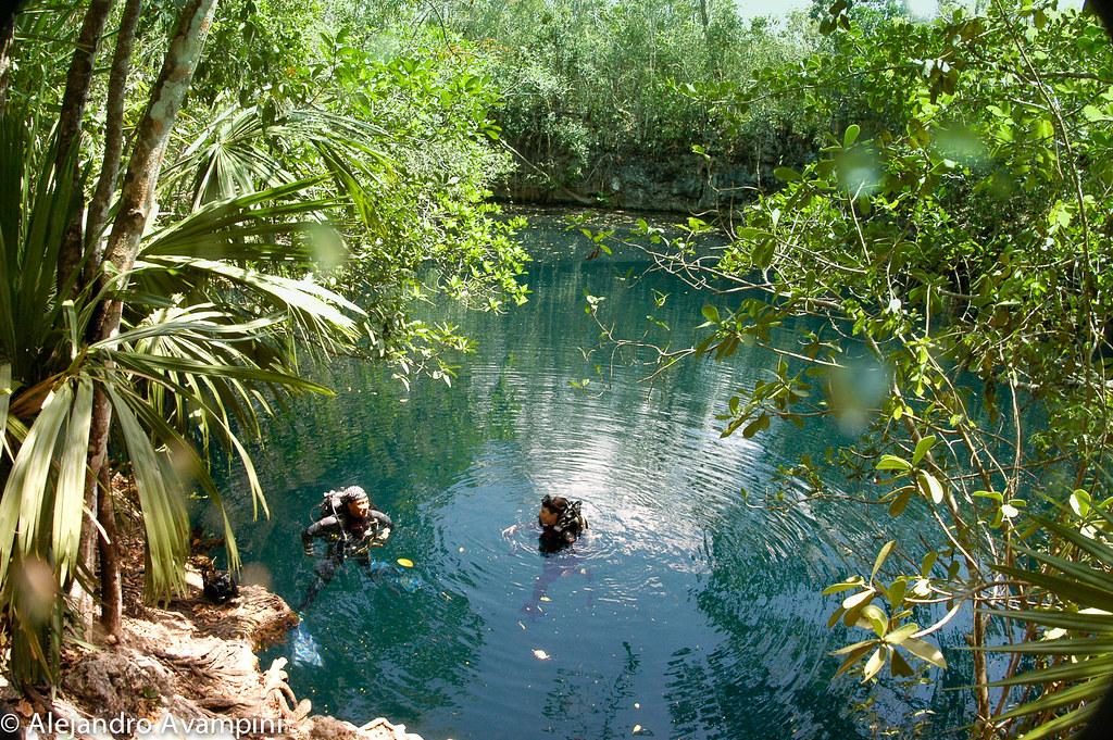 Cenote Angelita en la Riviera Maya - Península de Yucatán