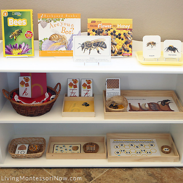 Montessori Shelves with Bee-Themed Activities