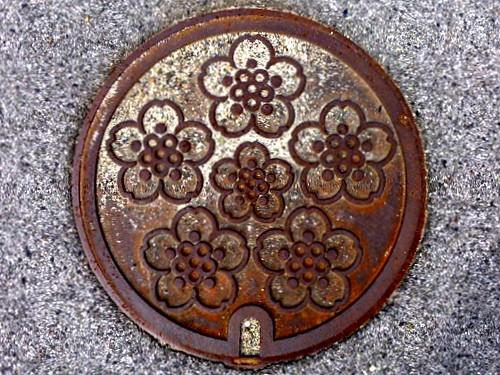 Koda Hiroshima, manhole cover 2 (広島県甲田町のマンホール2)