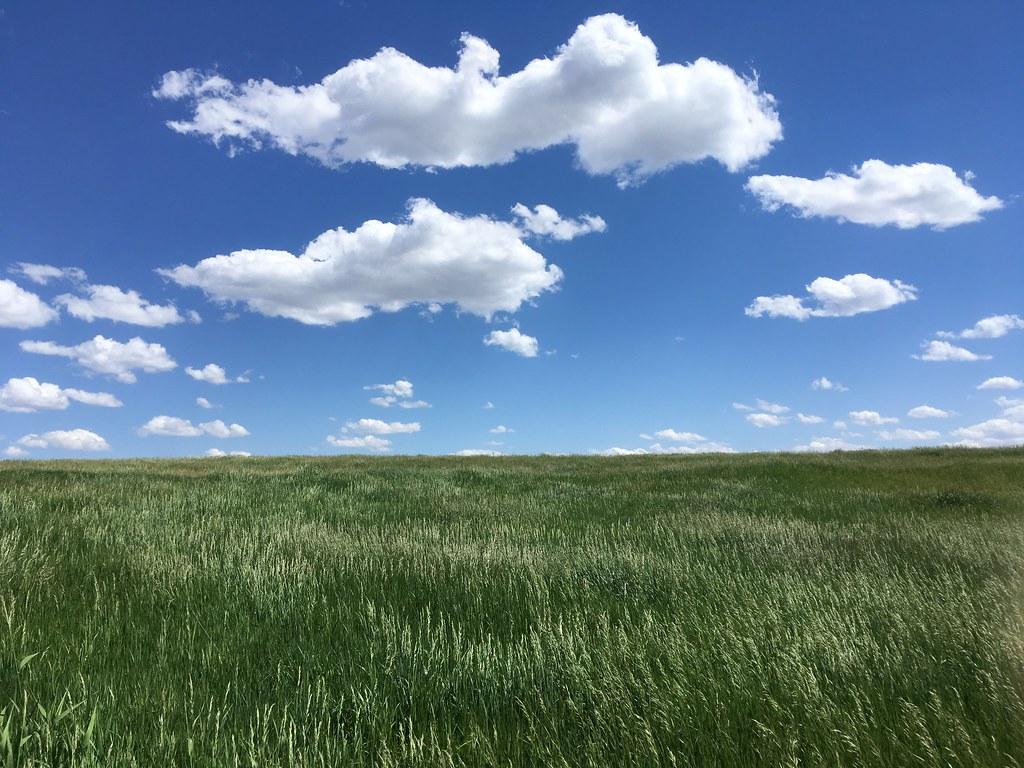 Prairie, Nebraska | by ADMurr