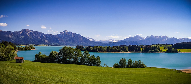 _forggensee