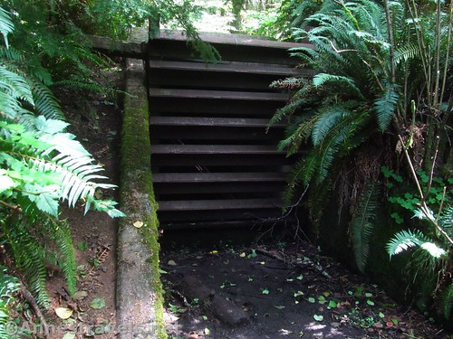 The entrance to the bunker is much harder to miss on the way back to the Clatsop Loop Trail, Oregon