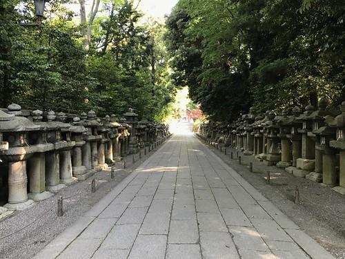 iwashimizuhatimangu48