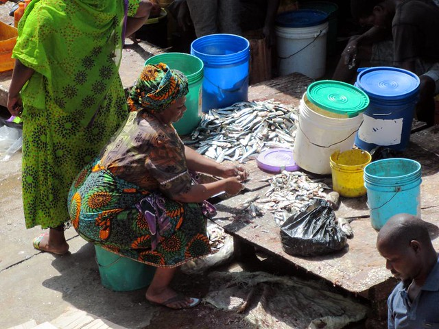 Cleaning fish in Ghana