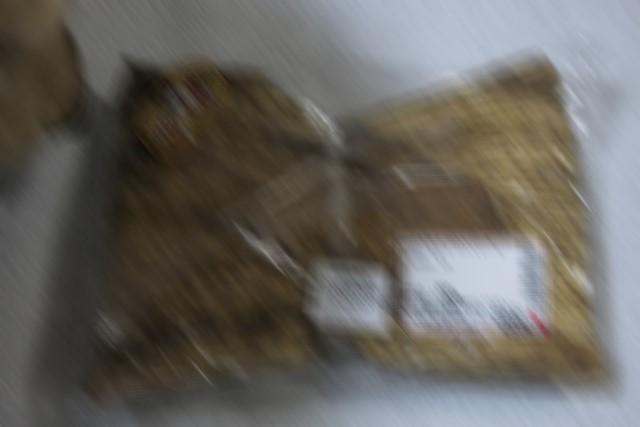 2017BD_IMG_8809_640-blur