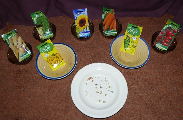 All you need in a seed activity from chapter 6 of Messy Church Does Science