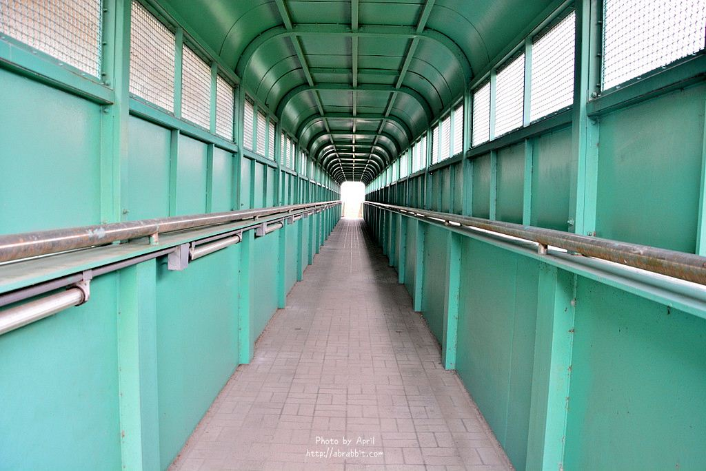 34765049522 11754b2564 o - 台中清水|清水龍貓隧道、田邊荷花池、三太宮塗鴉牆、綠色天橋隧道