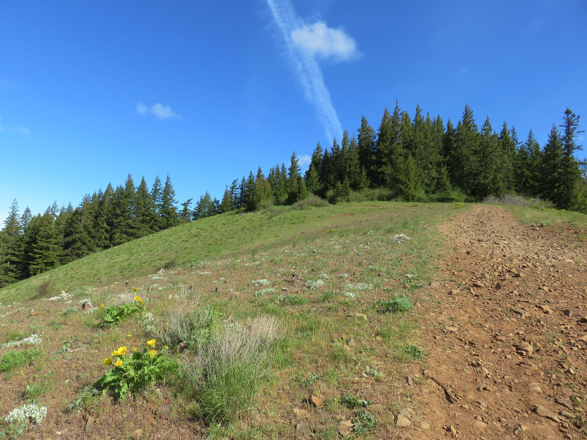 Heading toward Bald Butte