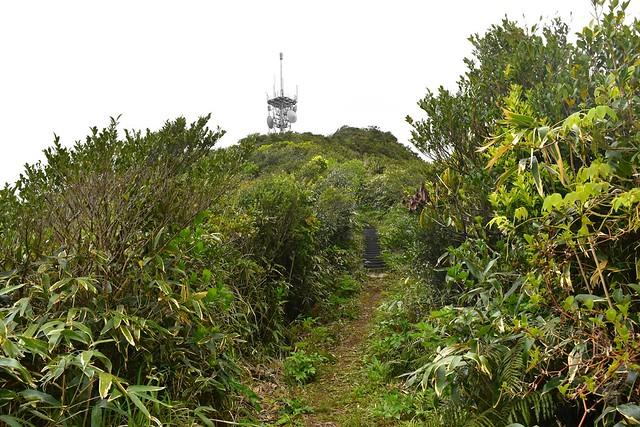 八丈島・三原山の稜線