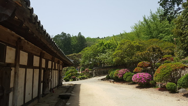 Seonamsa Temple (44)