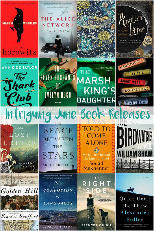 intriguing june 2017 book releases