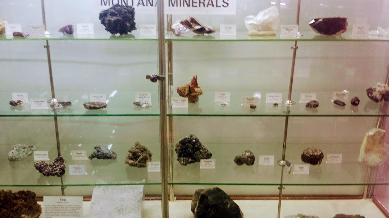 montana minerals case