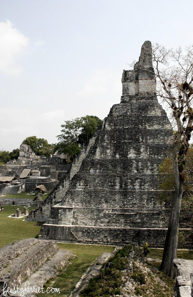 Tikal Guatemala_feistyharriet_April 2017 (8)