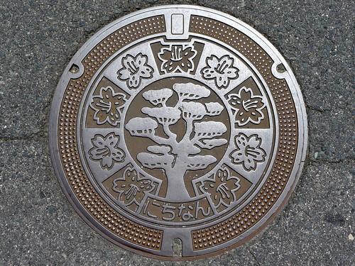 Nichinan Tottori, manhole cover (鳥取県日南町のマンホール)