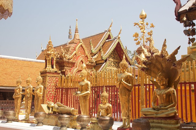 DOI SUHEP 4