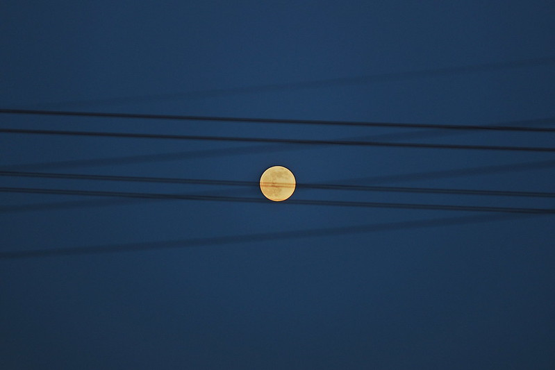 moon on wire