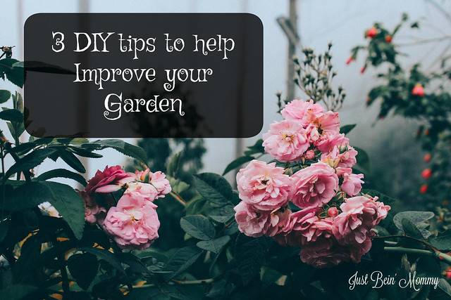 3 DIY tips to help improve your garden