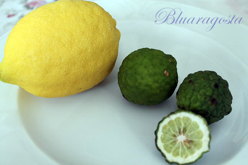 01-limone vs kaffir lime