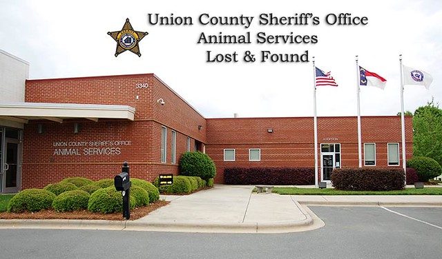 Union County Animal Services Lost & Found