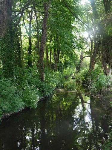 River Darent