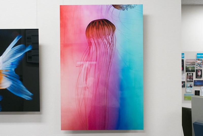 Nana_Misaki_Photo_Exhibition-11
