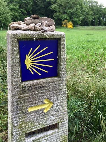 Camino de Santiago (Way of St. James) | by The Daily Joe