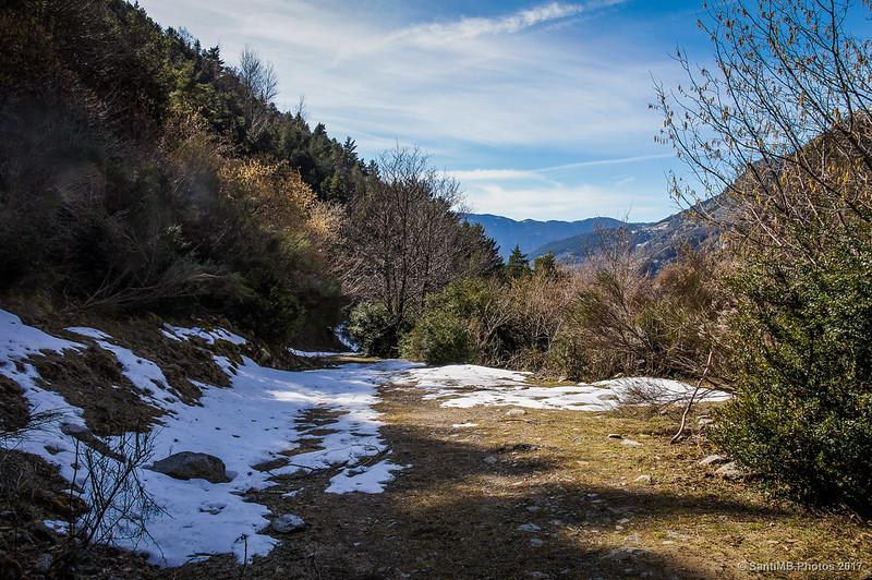 Nieve en la pista del Bosc de Carboners