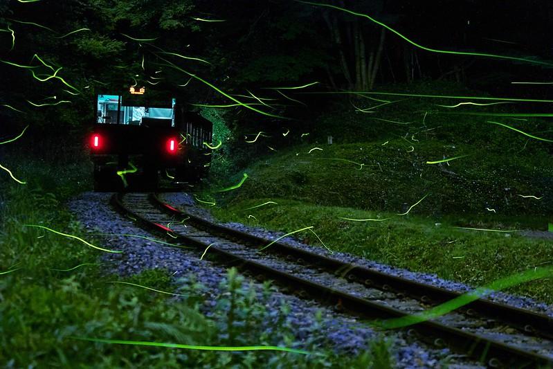 20170617-hotaru-TRAIN