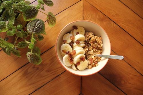 Granola amandes / noisettes (avec option vegan)