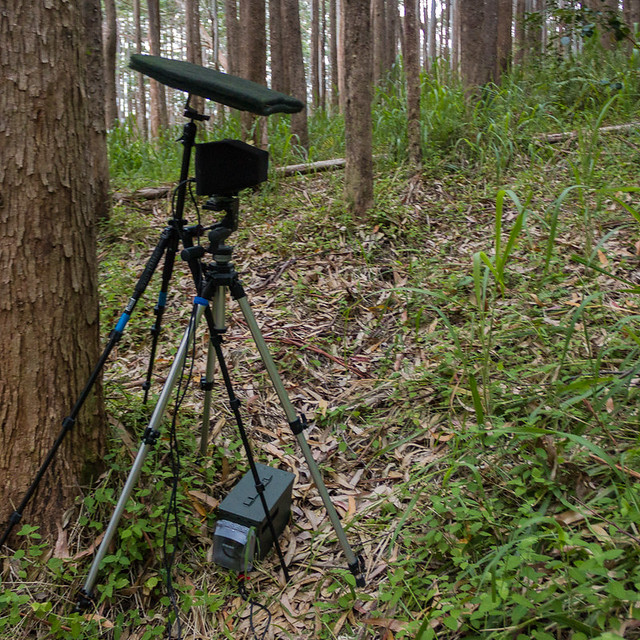 Weatherproof Recording Box in the Field