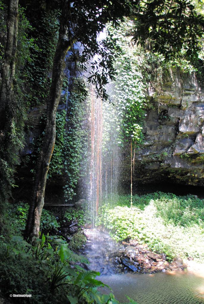 Vesiputous Dorrigon kansallispuistossa, Australiassa
