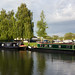Great Ouse, Ely