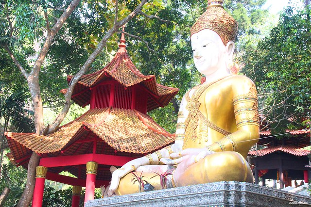 DOI SUHEP