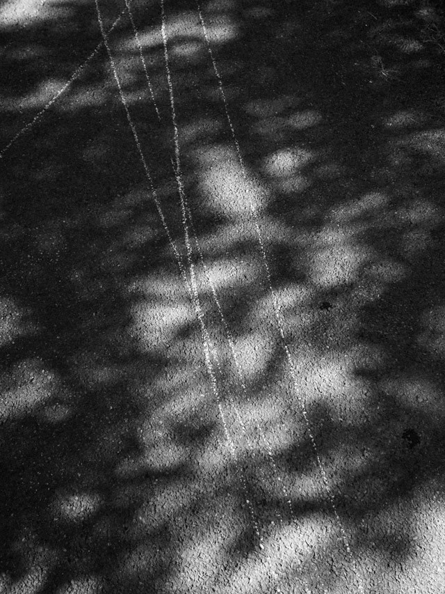 chalk lines and dappled shadows
