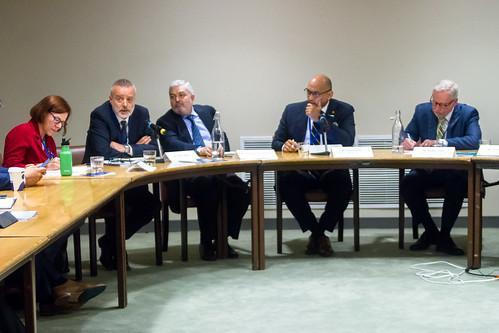 Grenada/UNDP/OECD Side Event: