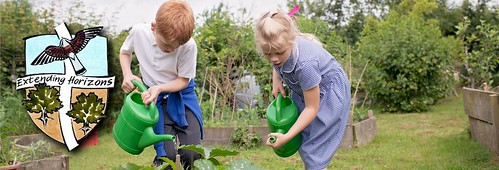 Gardening in the vegetable patch | by Hawkhurst CEP School Web Site Photos
