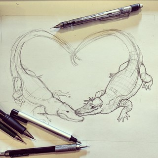Alligator Sketch 1 | by sarah draws things