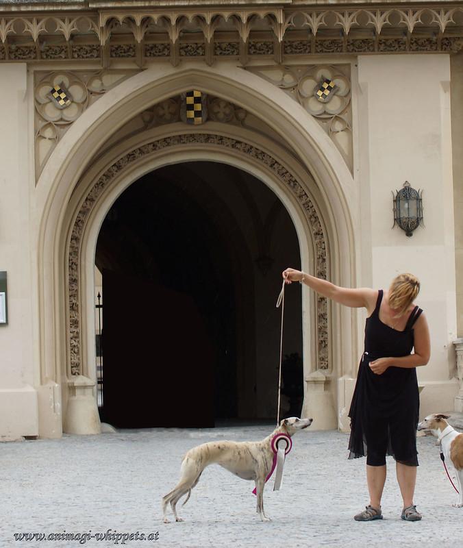 Khaleesi vor dem Schloss
