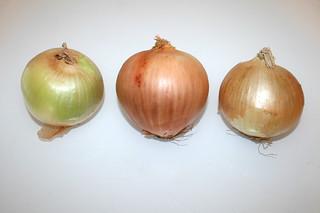 01 - Zutat Zwiebeln / Ingredient onion