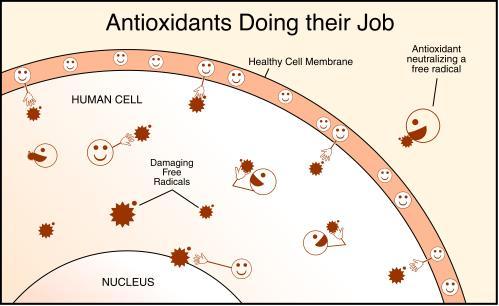 麩醯胺酸點滴幫您抗老回春,使肌膚重現亮麗光澤給您美白肌,想打點滴美白的民眾,麩醯胺酸點滴是您的好選擇!不僅抗老化抗衰老,還可抑制黑色素生成,給您美白肌