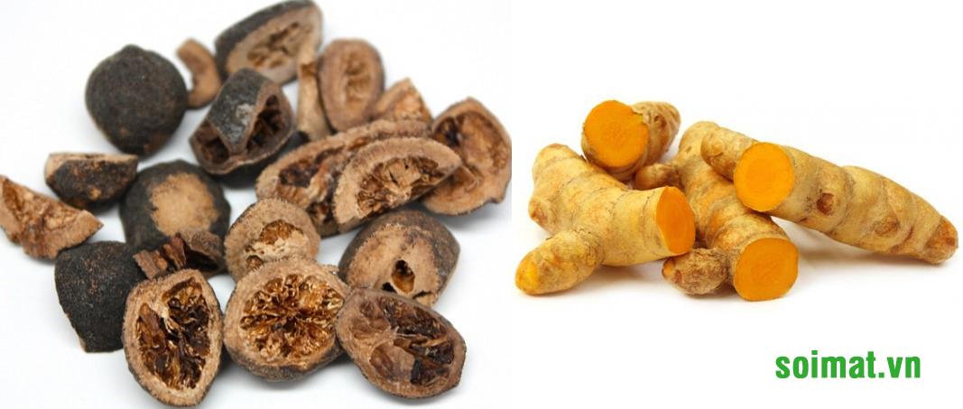 Chỉ xác, Uất kim – thảo dược giúp giảm đầy trướng, khó tiêu sau cắt túi mật 2