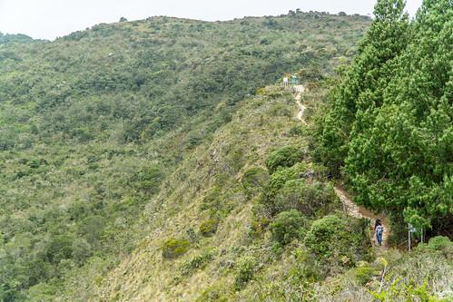 Laguna Guatavita Camino2