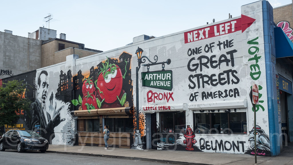 Image result for belmont the bronx new york