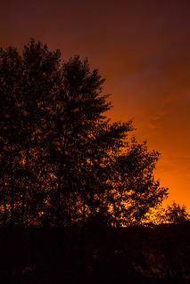 Fiery Sunset-2.jpg | by SpokaneFocus