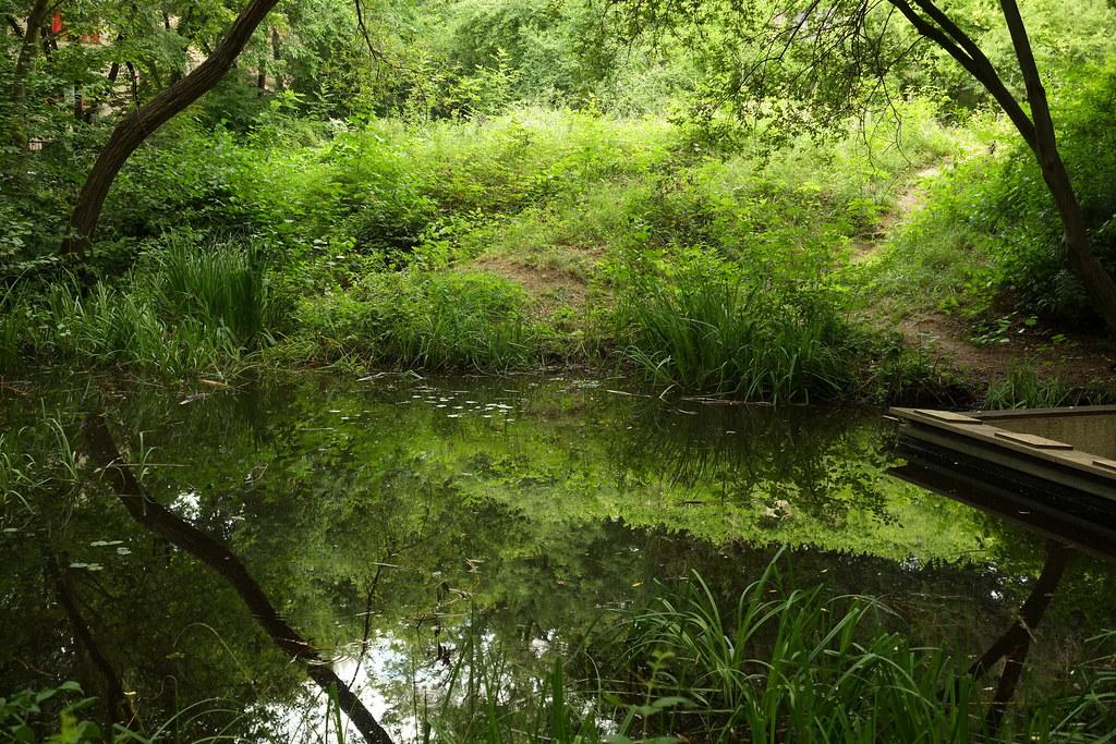 Le Jardin Naturel Apres Midi Itinerance Dans Paris