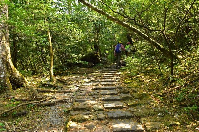韓国岳大浪池コース 序盤の石畳の階段